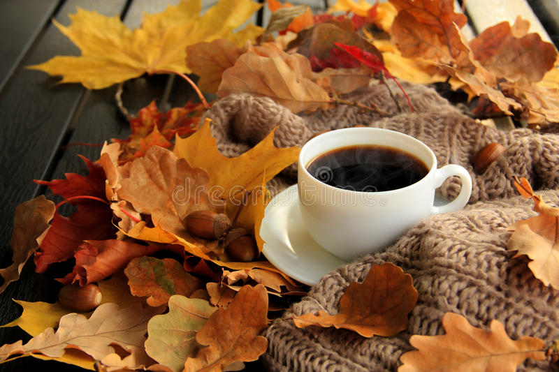 Autumn leaves and coffee cup. Fall scene. Autumn leaves, hot steaming cup of coffee and a warm scarf on wooden table background. Seasonal, morning coffee, sunday royalty free stock photos