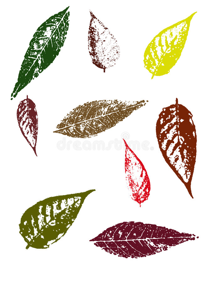 Autumn Leaves II. Grunge elements - Autumn Leaves II. Highly Detailed vector grunge elements