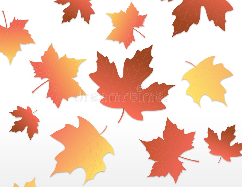 Download Autumn Leaves [maple] Royalty Free Stock Photo - Image: 2718455