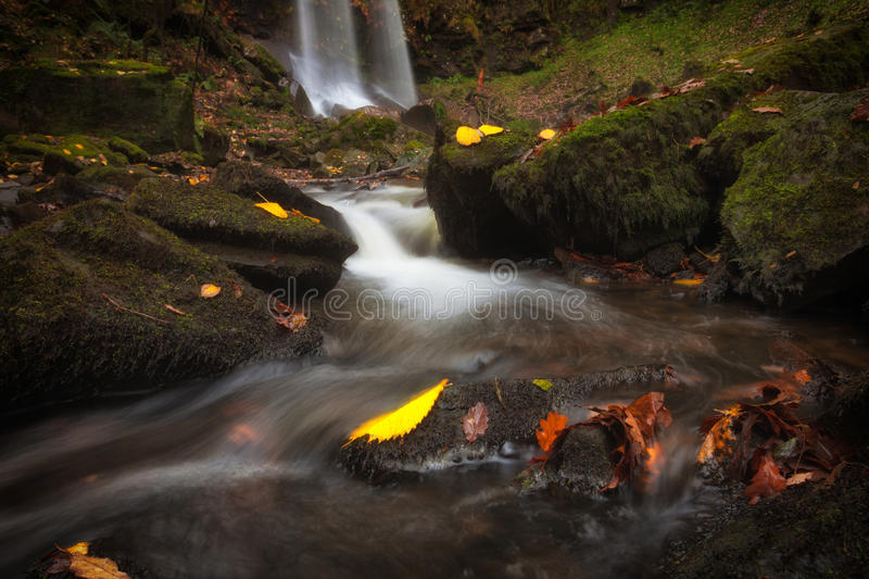 Autumn leaves at Melincourt. Beautiful Autumn leaves at Melincourt waterfalls in Resolven, near Neath, South Wales stock image