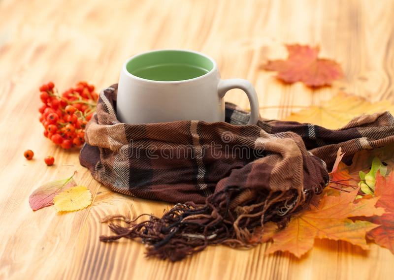 Autumn leaves with a mountain ash and a Cup on the table. Full circle scarf with autumn leaves and rowanberry on wooden table. Place for text royalty free stock image