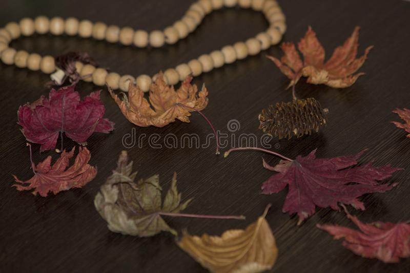 Autumn leaves on a wooden table royalty free stock image