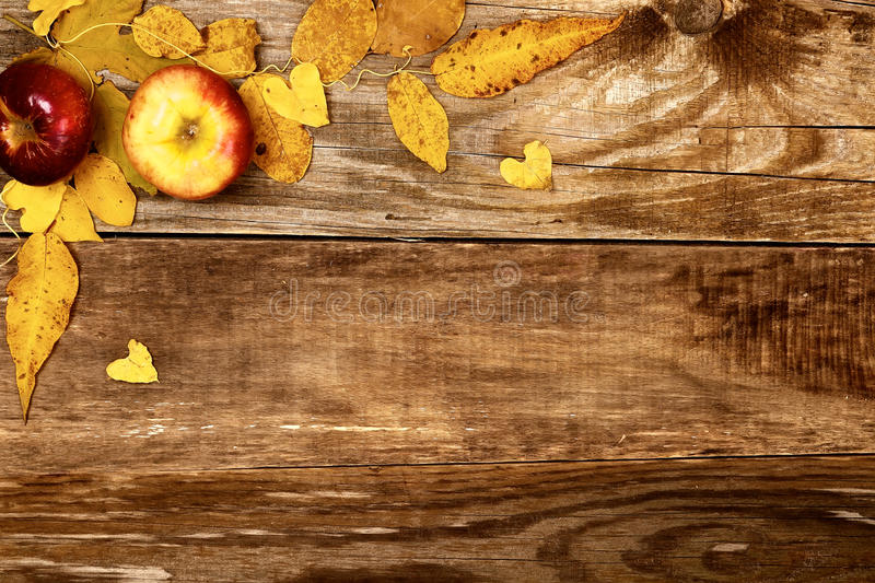 Autumn leaves on old wood. Frame of autumn leaves on old wood background stock images