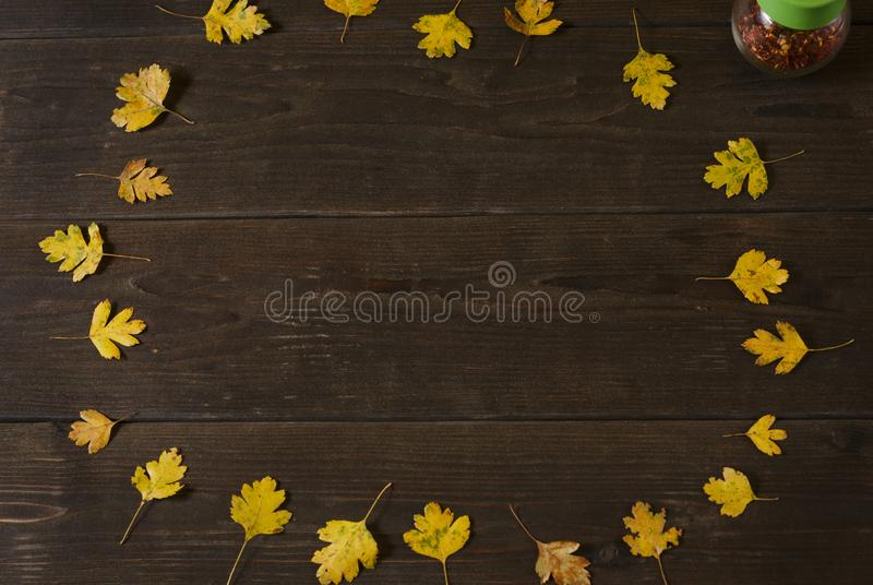 Autumn leaves on old wooden background. Autumn decor, fall mood, autumn still life royalty free stock photos