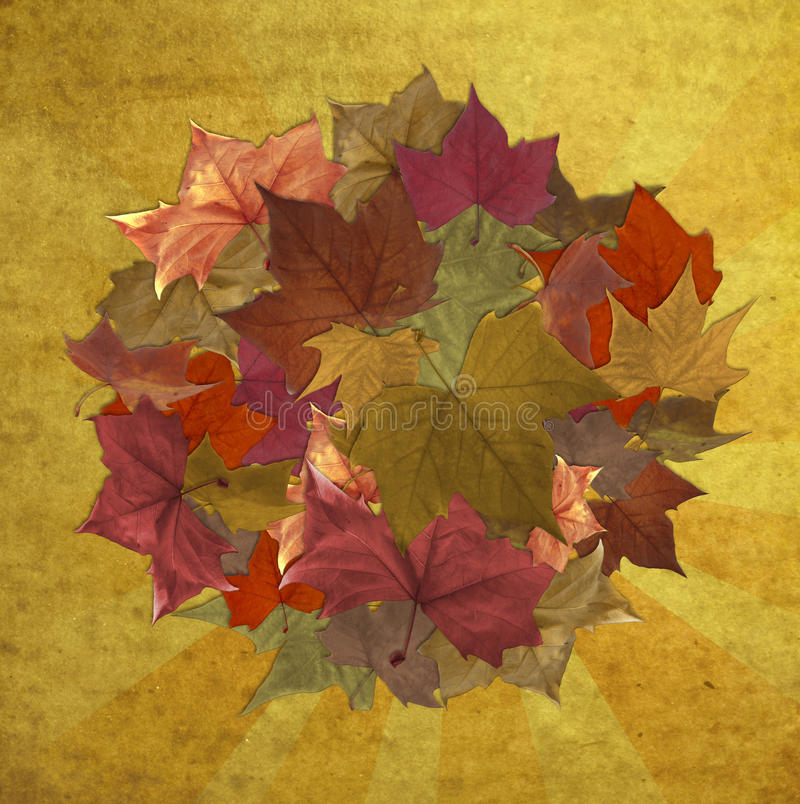 Autumn leaves over striped vintage background stock photo