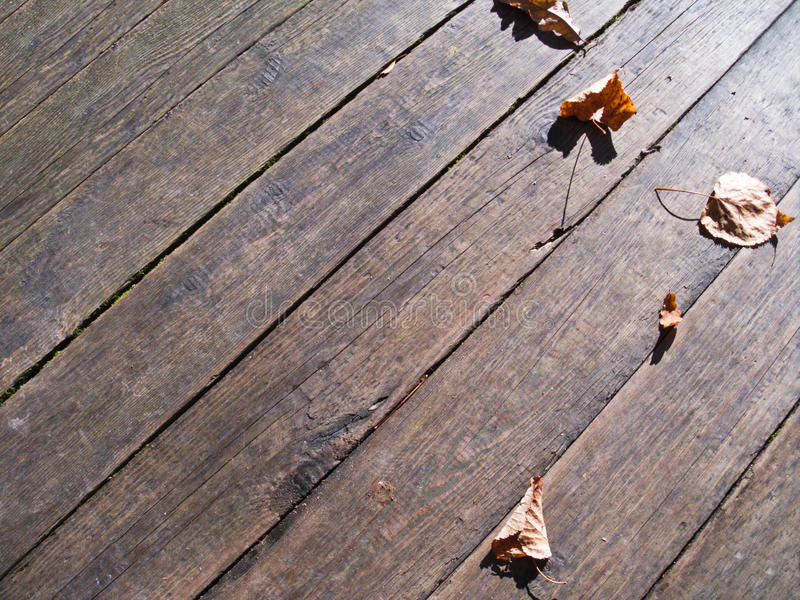 Download Autumn Leaves Over Wooden Boards Floor Stock Photo - Image: 20657198