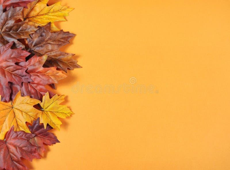 Autumn Leaves på modern trendapelsinbakgrund arkivfoto