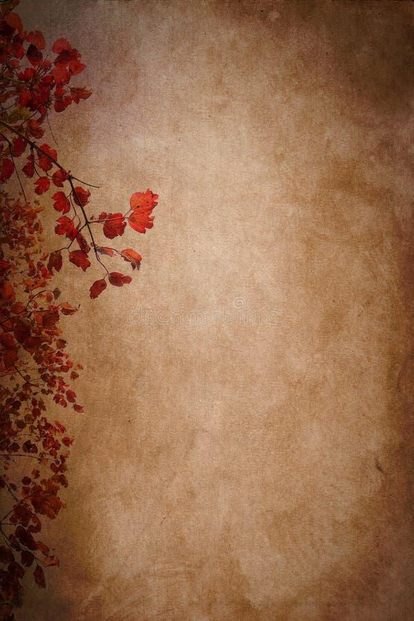 Autumn Leaves Paper Texture Background images libres de droits