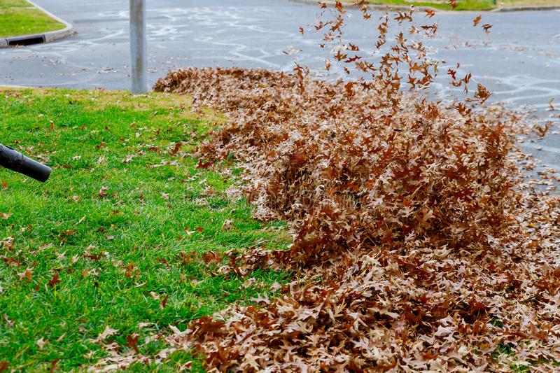 Autumn leaves pavement and broom fall leaves with rake royalty free stock photos