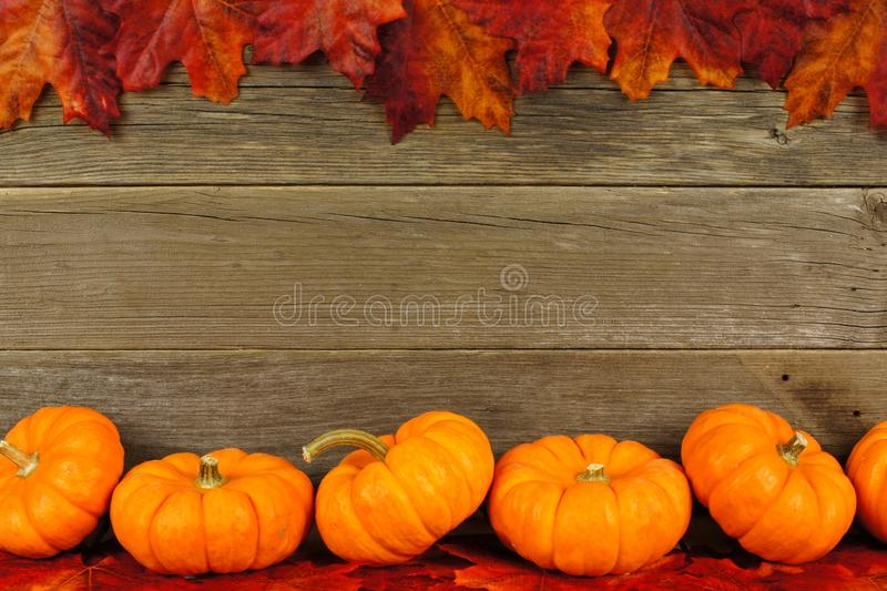 Autumn Leaves And Pumpkin Frame Stock Photo - Image of many, copy ...