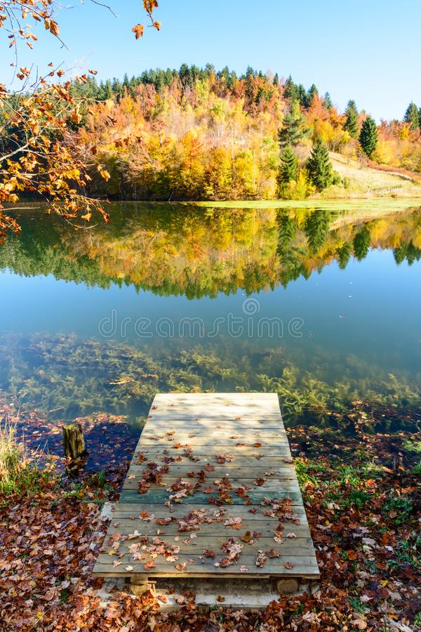 Autumn leaves reflecting in the water stock photography