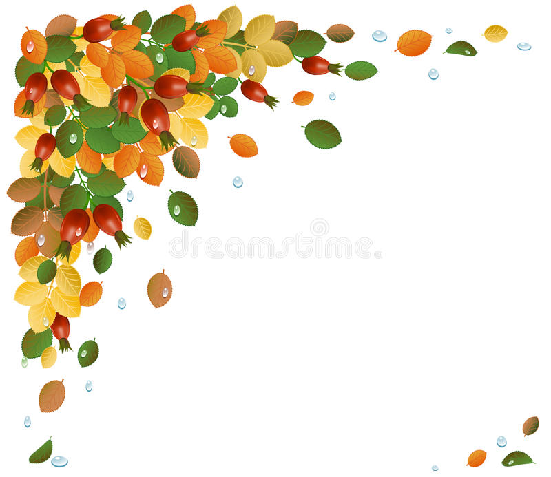 Download Autumn Leaves With Rose-hips, Background Stock Vector - Illustration: 20767970