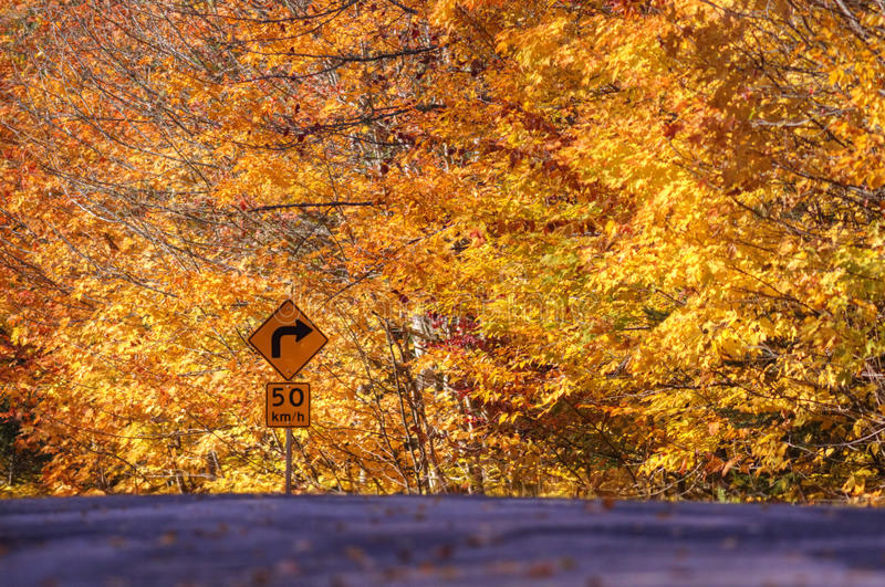 Download Autumn Leaves Rural Road Sign Stock Photo - Image: 16610752
