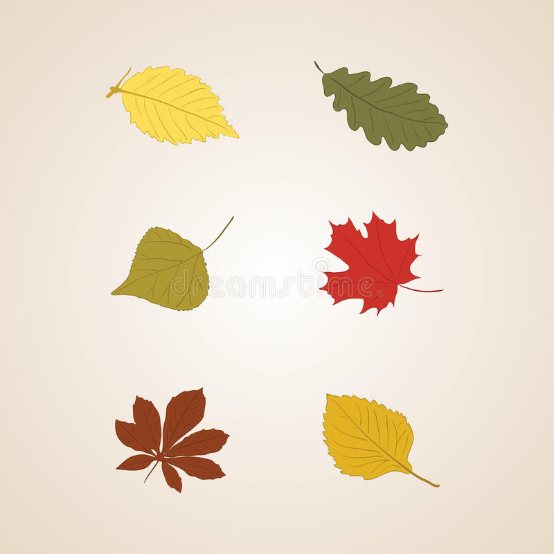Free Autumn Leaves Set Vector Background Stock Image - 43421151