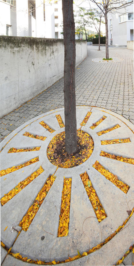 Download Autumn leaves on sidewalk stock image. Image of colourful - 11355409