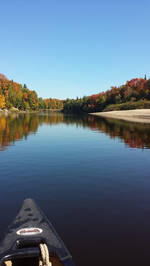 Autumn Leaves su un funzionamento caldo del fiume immagini stock