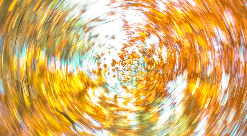 Autumn Leaves Swirl ilustración del vector