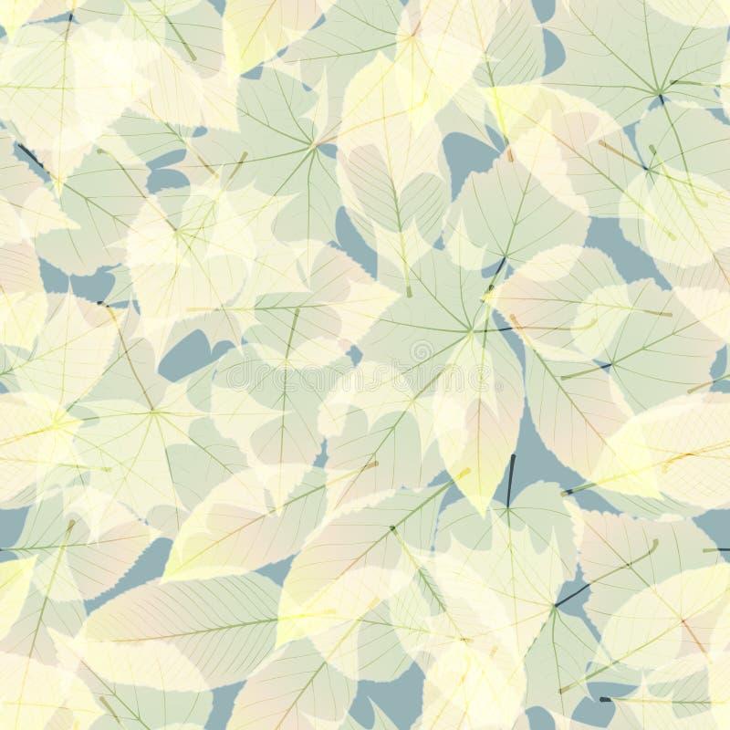 Download Autumn Leaves Transparente EPS10 Más Ilustración del Vector - Ilustración de bosque, gráfico: 42442307