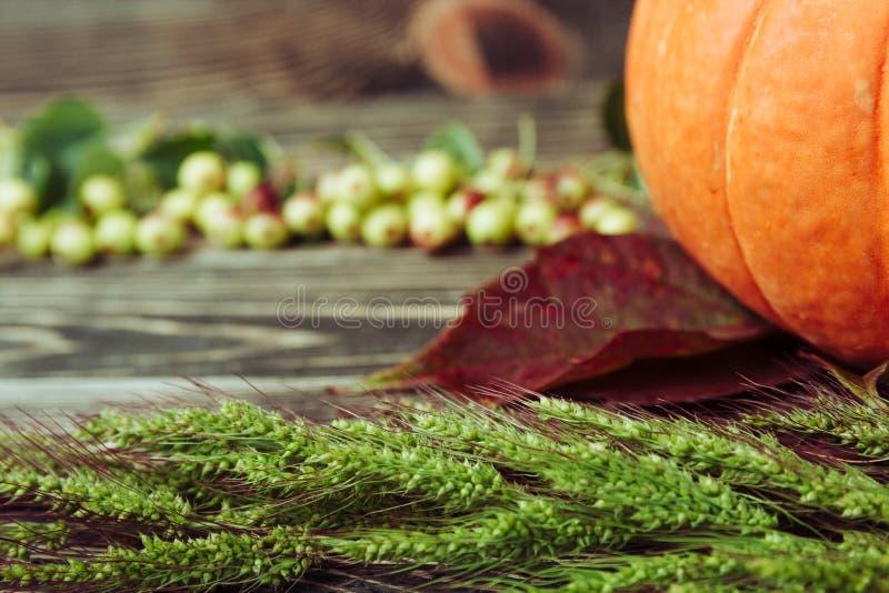 Autumn Leaves und Kürbis gegen gealtertes Holz, Gras, Äpfel stockfotos