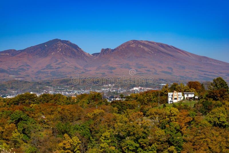 Autumn Leaves und Mt Asama stockfotografie