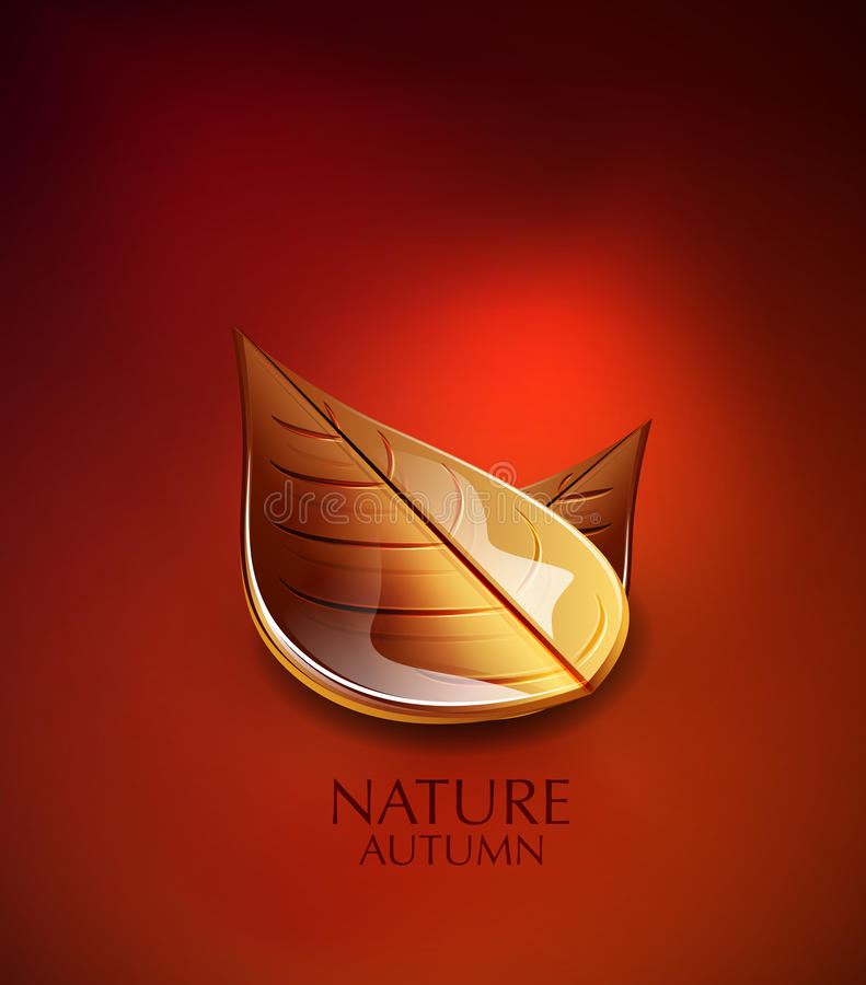 Autumn Leaves Vector Background Stock Photo