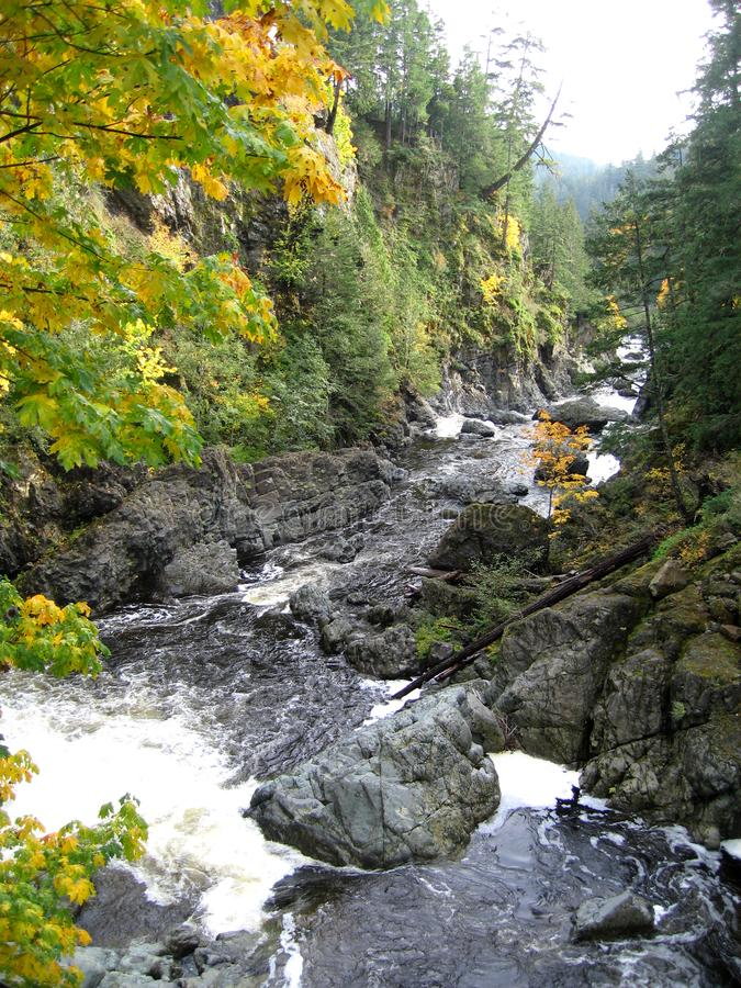 Autumn leaves and wild Canadian river stock photography
