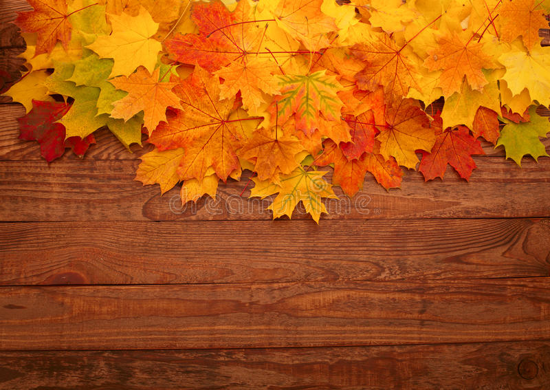 Autumn leaves on wooden table. royalty free stock photo