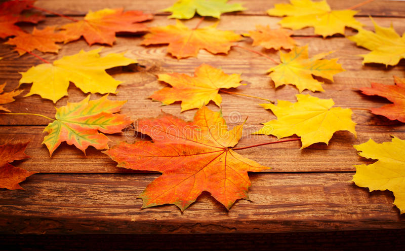 Autumn leaves on wooden table. stock photo