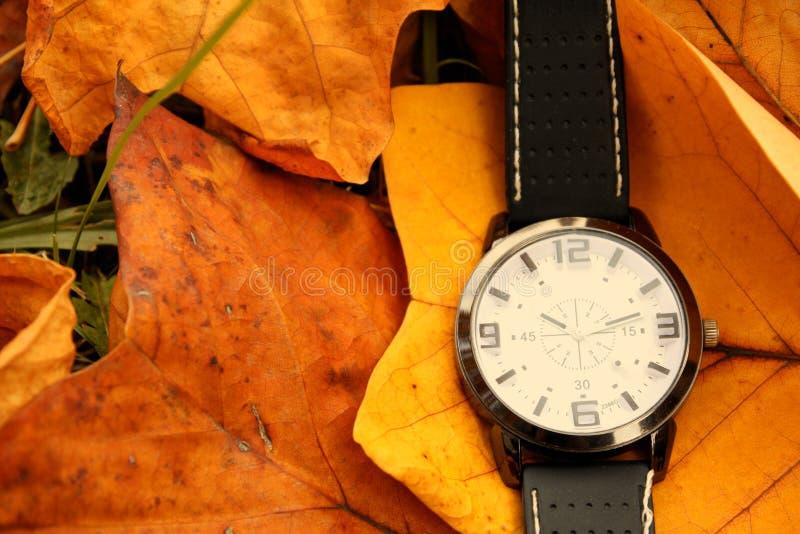 Autumn Leaves y despertador aislados fotos de archivo libres de regalías