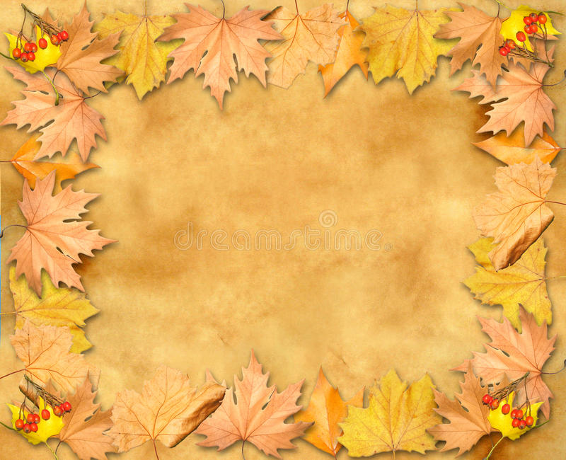 Autumn leaves yellow frame over old paper stock illustration