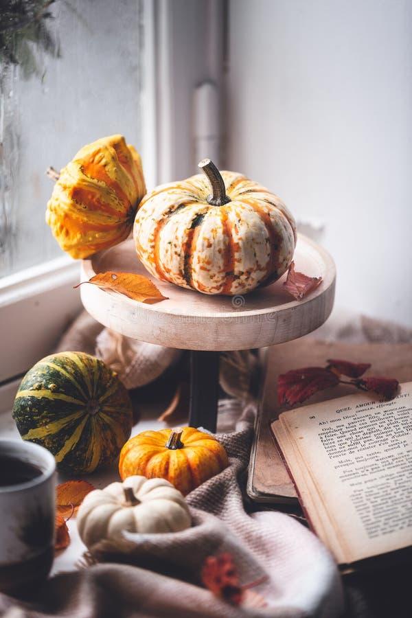 Autumn Lifestyle con la zucca, il tè, il libro e la coperta immagine stock