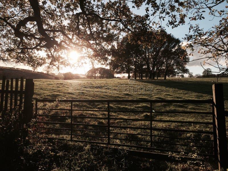Autumn Light imágenes de archivo libres de regalías