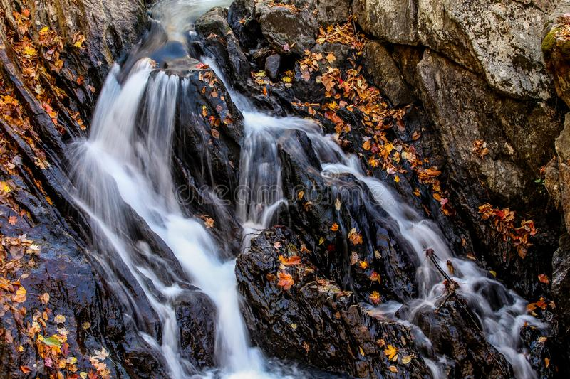 Autumn little waterfalls with leaves stock photography