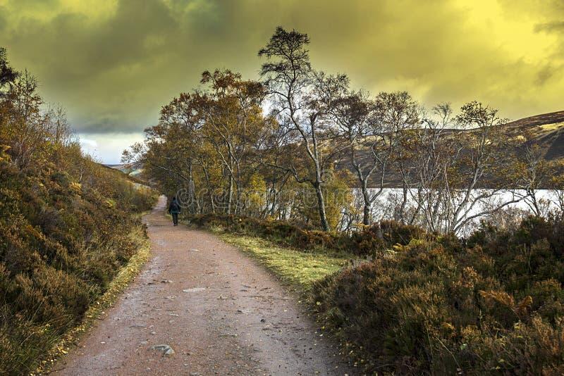 Autumn at Loch Muick. Balmoral Estate, Ballater, Aberdeenshire, United Kingdom. Autumn at Loch Muick in Royal Deeside. Ballater, Aberdeenshire, Scotland, UK stock photo