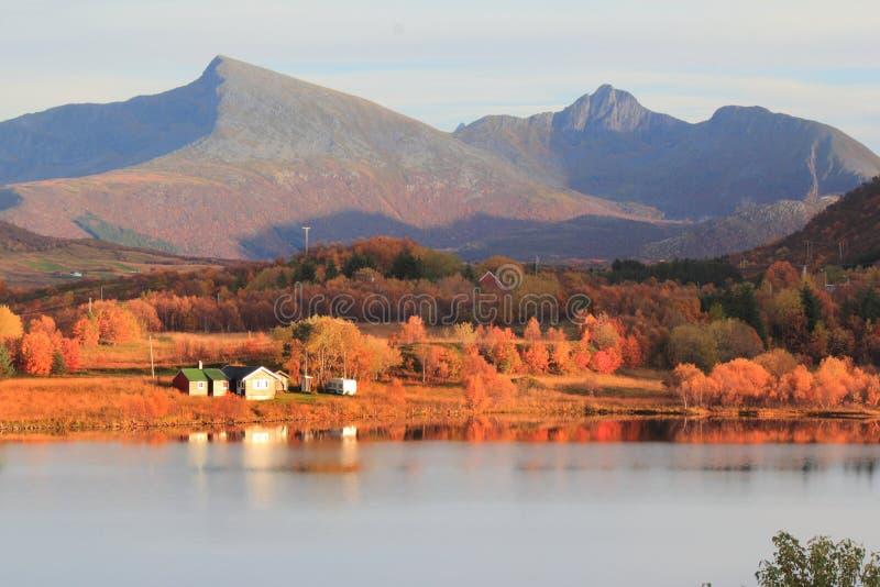 Autumn in Lofoten royalty free stock images