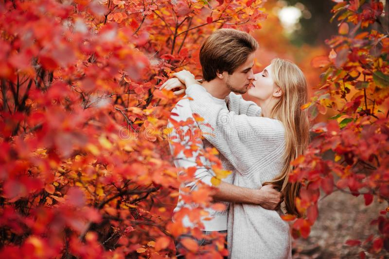 Autumn love, couple kissing in fall park stock photos