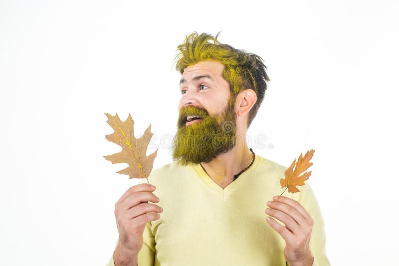 Autumn man in autumn mood posing with yellow leaves - banner with space for text. Autumn sale. Autumn clothing and color stock photos