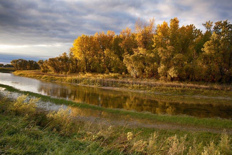 Autumn Manitoba River Sunset arkivbild