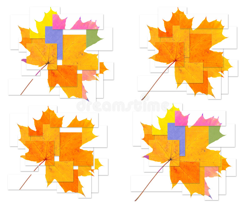 Autumn maple leaf. Puzzle - an autumn maple leaf stock photos