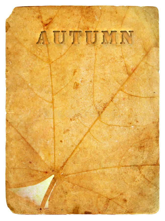 Download Autumn Maple Leaf. Old Postcard. Stock Illustration - Image: 23459080
