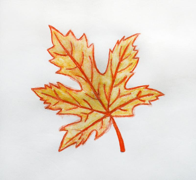Autumn maple leaf painted by watercolor pencils on white isolated background. Bright orange leaf stock illustration
