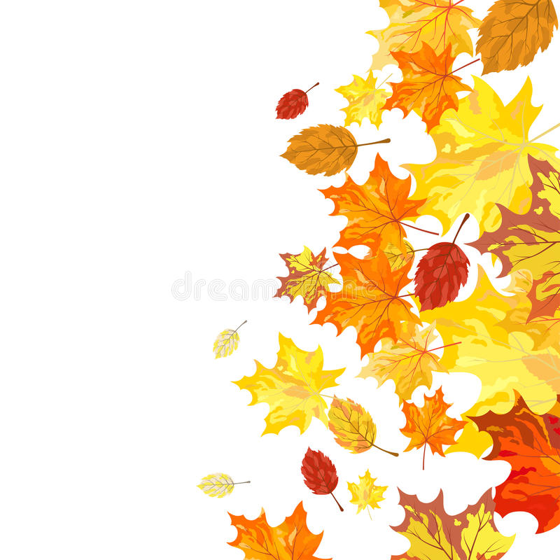 Download Autumn maple leaves stock vector. Illustration of abstract - 26821570