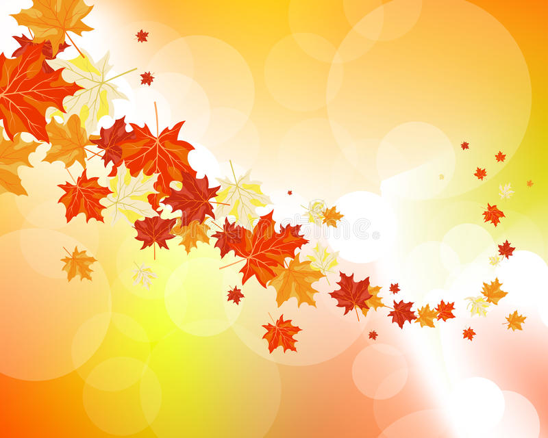 Download Autumn maple leaves stock vector. Image of foliage, autumnal - 34700780