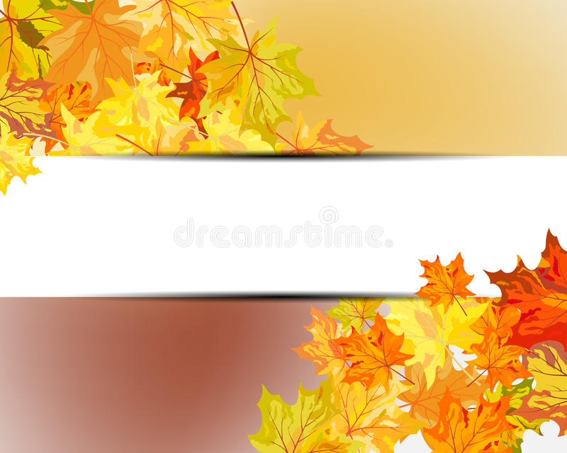 Download Autumn maple leaves stock vector. Image of border, group - 32197171