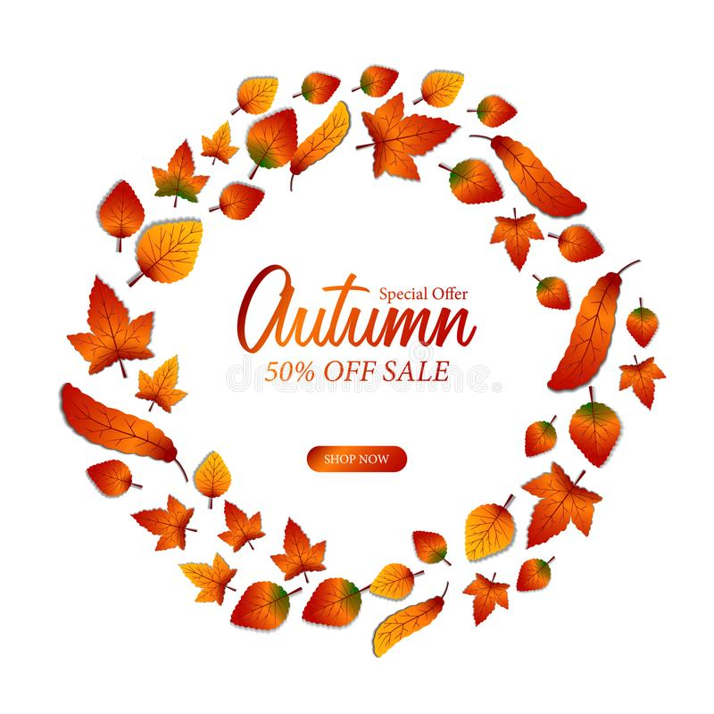Autumn maple leaves fall template from the top for background and decoration. And wallpaper vector illustration