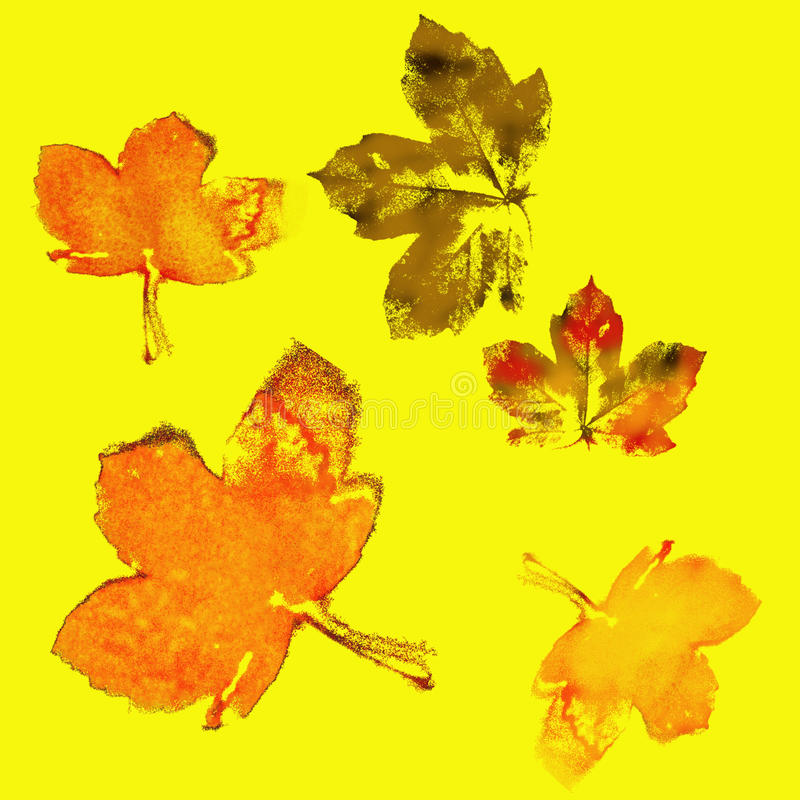 AUTUMN maple Leaves mixed fall colors. Maple Leaves Mixed Fall Colors Autumn on yellow Background stock illustration