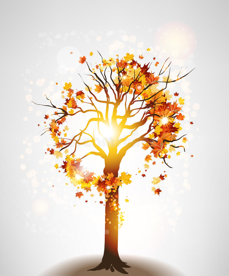 Autumn maple tree and sunlight vector illustration