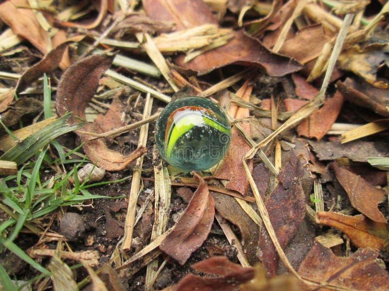 Autumn Marble. royalty free stock photo