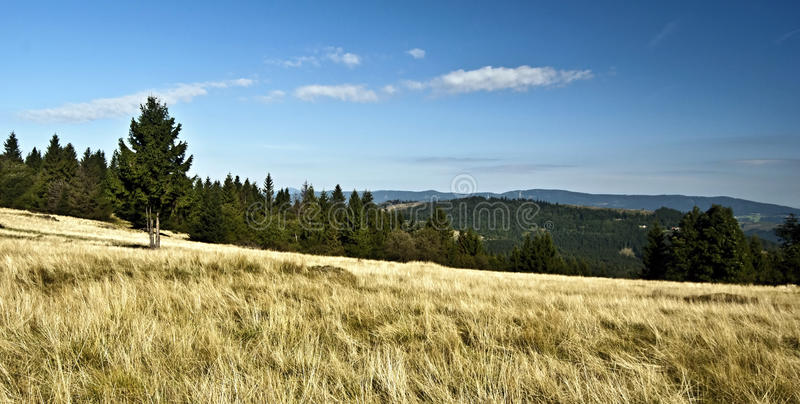 Autumn meadow with isolated tree and panorama of mountain ranges in Javorniky mountains royalty free stock photo