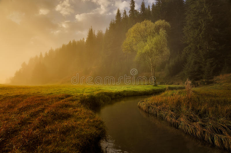 Download Autumn meadows stock photo. Image of nature, autumn, sunrise - 22160296